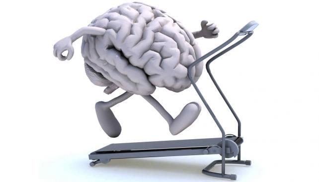 El poderoso beneficio del ejercicio físico para el cerebro