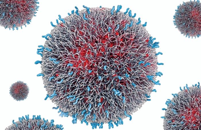 nanomedicina2