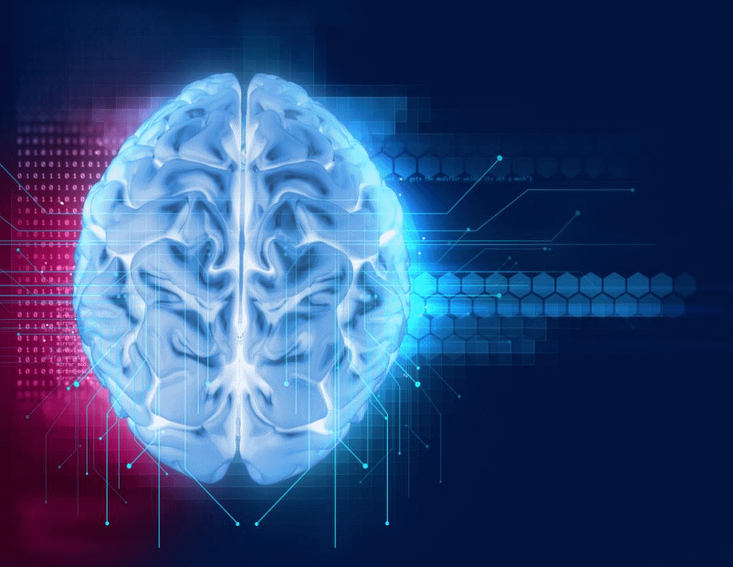 cerebro rojo azul